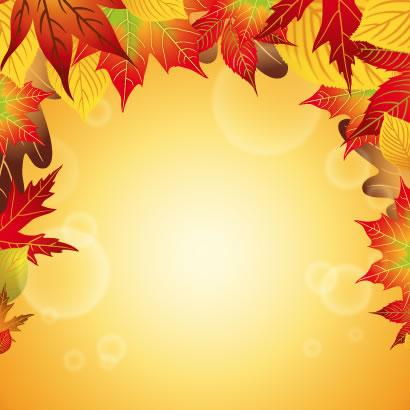 鮮やかな色合いのもみじが美しい秋の紅葉背景