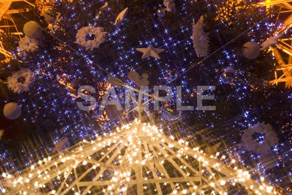 イルミネーションがキラキラと輝くクリスマスツリーを下から見上げた写真