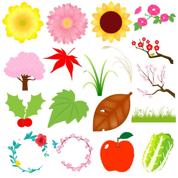 様々な植物イラスト