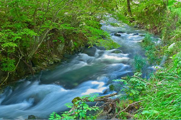 川の写真素材
