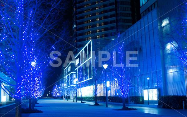 街路樹につけられたイルミネーションが青く輝くクリスマスの街並みの背景写真