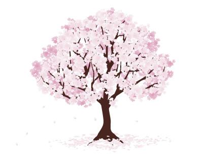 桜のイラスト無料フリー素材